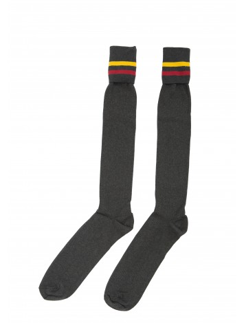 Boys Knee Hi Sock  MSSC