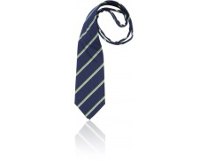 Tie Freshwater College