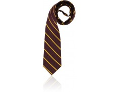 Formal Snr Boys Tie  SDSHS