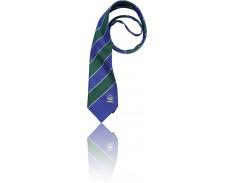 Senior Boys Tie TCC